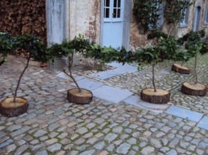creative-tree-stump-ideas-17-500x374